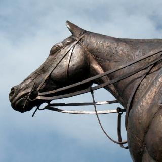 HORSE PORTRAIT OF KINCSEM 2016